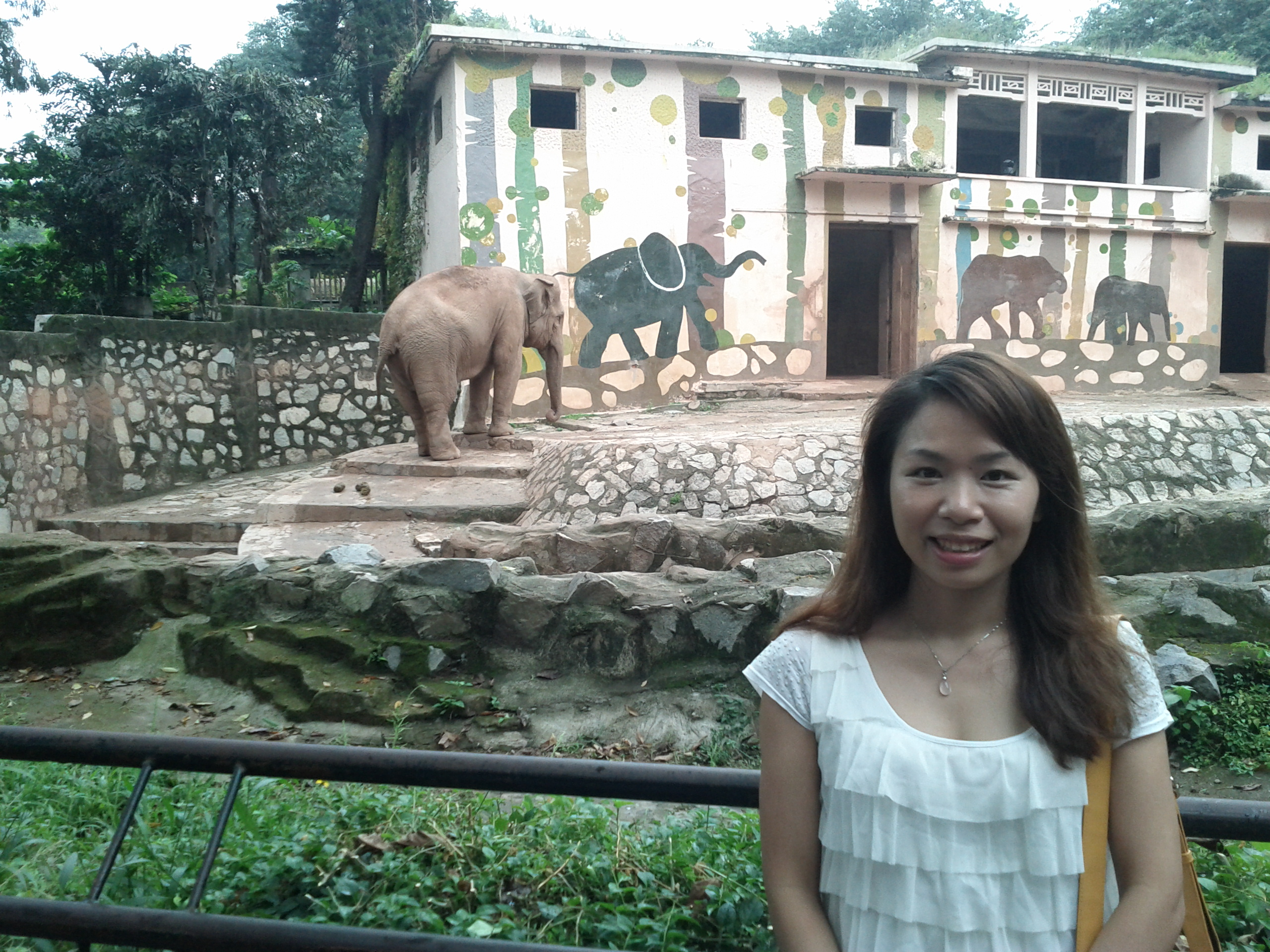 Yoyo with an elephant at Guangzhou zoo